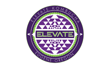 elevate-kombucha-new-light